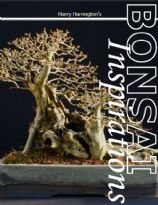 Bonsai Inspirations